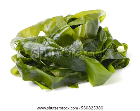 soaked wakame seaweed, japanese food