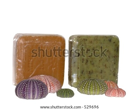 soap bars and shells, isolated soft focus - stock photo
