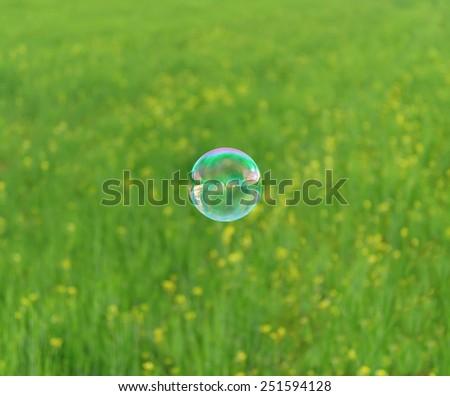 Soap bubble flying on flowers meadow in summer - stock photo