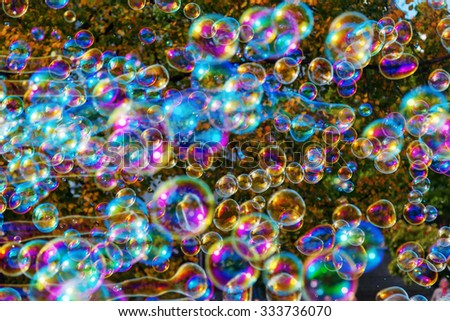 soap bubbles in front of an autumn colored tree