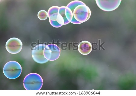 Soap Bubbles in front of the forest - stock photo