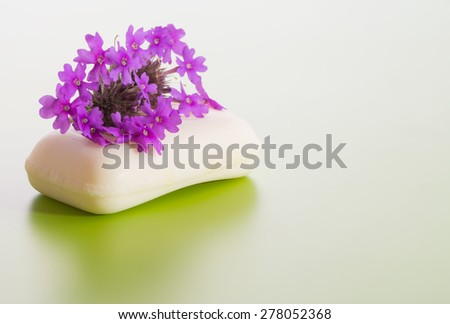 Soap topped with purple Prairie Verbena flower, on gradient green background - stock photo