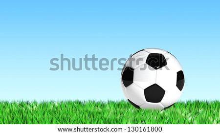 Soccer Ball on Grass  for use in presentations, manuals, design, etc.