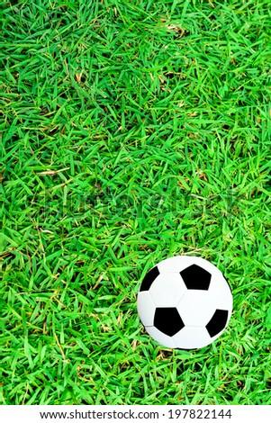 Soccer ball on green field. - stock photo
