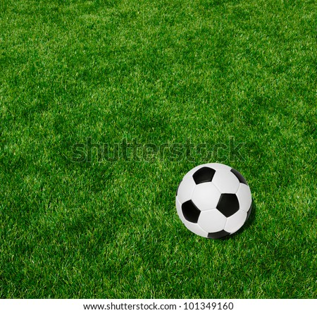 Soccer ball on the green lawn