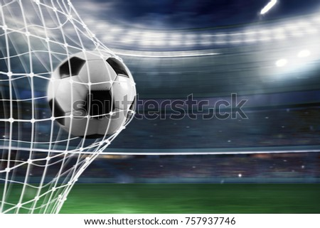 Soccer ball scores a goal on the net