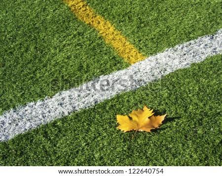 Soccer Field's Lines in Autumn. Macro shot. - stock photo