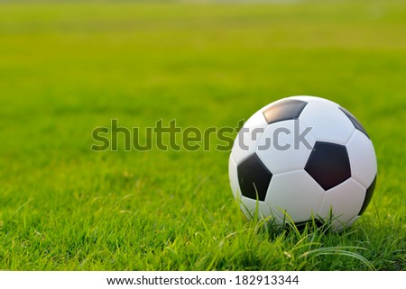 soccer field, soccer match, soccer on grass, soccer football, soccer team, soccer sport, soccer ball, soccer and sun light, soccer play, soccer concept, soccer kick and soccer game. - stock photo