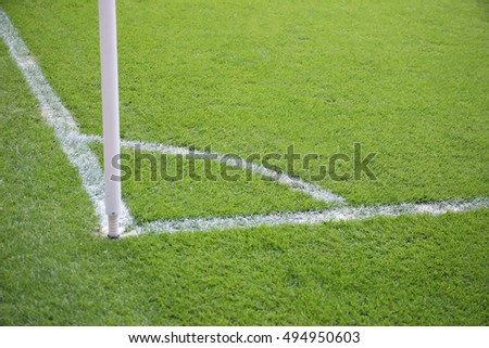 Soccer field with natural grass in a stadium