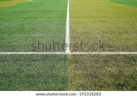 Soccer football field stadium grass