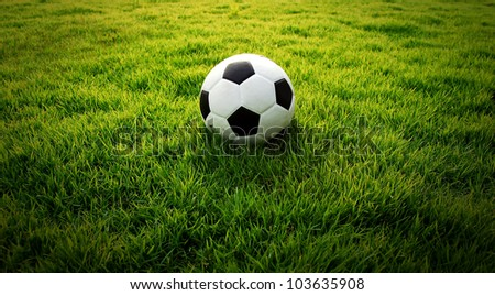 Soccer football field stadium grass line ball background texture light shadow on the grass - stock photo