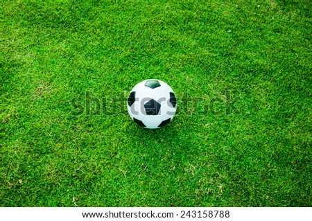 Soccer Football on Wide Grass Field (in Stadium or Local Field)  Sport Concept and Idea  / for background, wallpaper, texture. Standard Ball Black and White. - stock photo