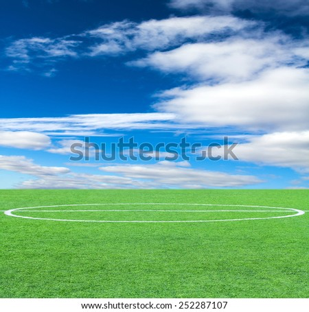 Soccer green grass field at the background of the sky