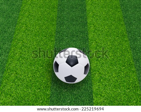 soccer or football on grass field
