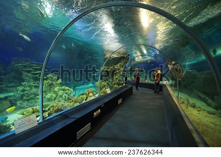 SOCHI, ADLER, RUSSIA - MAR 12, 2014: Sochi Discovery World Aquarium - one of the main attractions of Adler, the largest aquarium in Russia - stock photo