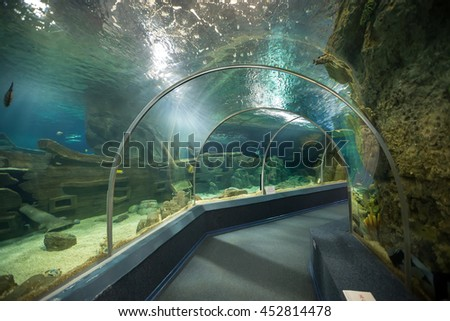 Sochi, Russia - February 11, 2016: Sochi Discovery World Aquarium - one of the main attractions of Adler, the biggest aquarium on the southern coast of Russia - stock photo