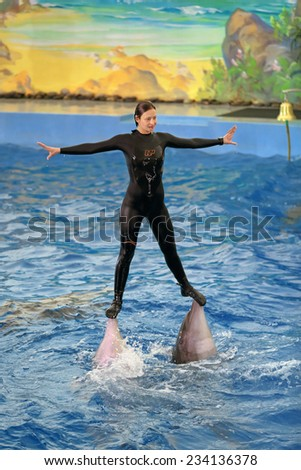 SOCHI, RUSSIA - MAR 27, 2014: The Dolphinarium in the Riviera Park. The instructor floats in the pool with marine mammals - dolphins - stock photo