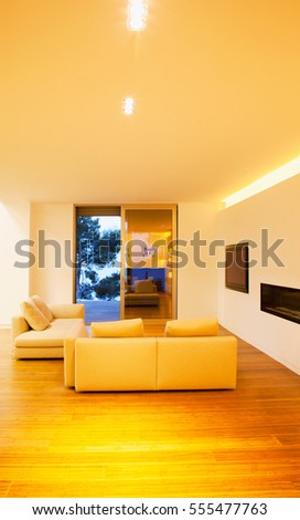 Sofa of tissue in a modern living room. Living Room Interior in New Home. Living room with elegant sofa in modern house