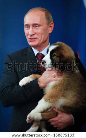 SOFIA, BULGARIA - NOVEMBER 13: Russian Prime Minister Vladimir Putin cuddles Bulgarian breed sheepdog puppy named Buffy,at Bulgaria's Council of Miisters office in Sofia, Bulgaria on November 13, 2010