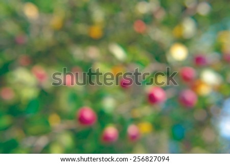 Soft abstract, natural background nature, out of focus, not sharp - stock photo