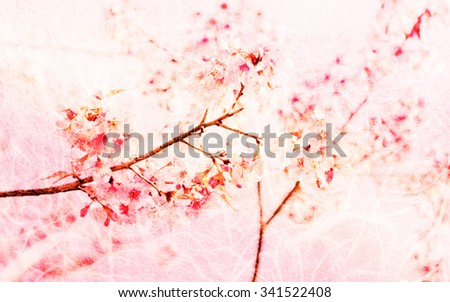Soft Blurred of sakura pink flower on mulberry paper for background with pastel vintage retro color tone.
