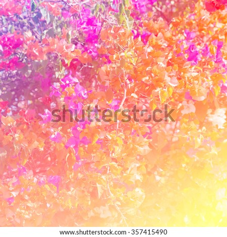 Soft blurred of vintage flowers with soft bokeh in pastel tone for background. - stock photo