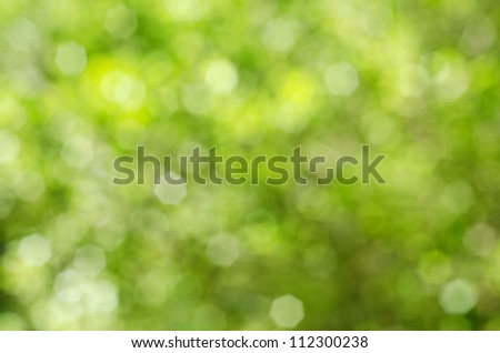 Soft, blurry, photographed bokeh background of greens and yellows from nature. - stock photo
