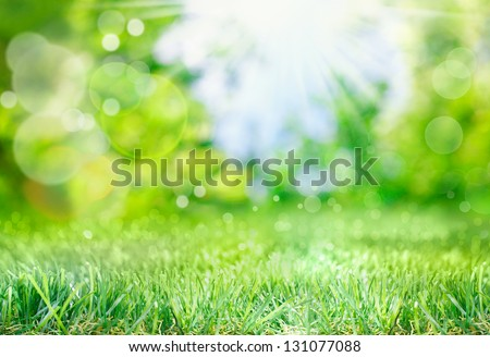 Soft defocused spring background with a sunburst and bokeh over lush green grass - stock photo