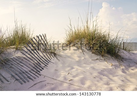 Soft early morning sunlight paints the dunes and sea oats on a sandy beach accented by weathered wooden sand fences. - stock photo