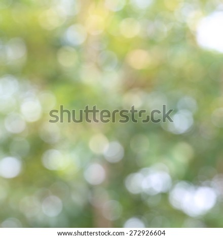 Soft focus natural green background.