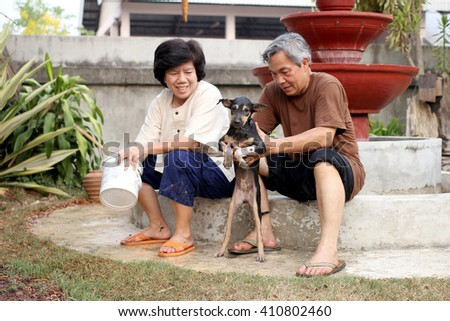 soft focus of A Man in brown shirt and A Woman in white shirt in lanna style with smile is bathing dog. Black Thailand Bangkaew dog breed.