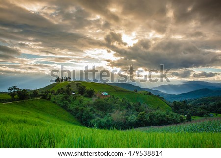 "Soft focus of terrace rice field on the mountain with background ray lighting in the evening. ""Pah Pong Piang"" in Mae chaem, Chaing Mai, Thailand"