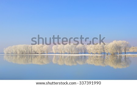 Soft focus Reflexion of winter trees covered with frost - stock photo