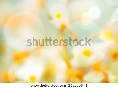 soft focused and colored pastel spring flower background  - stock photo