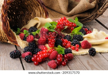 Soft fruits - stock photo