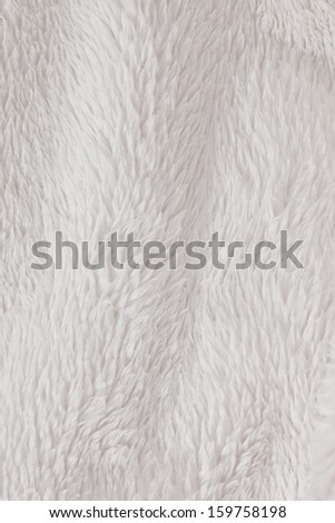 Soft, fur furry white textured background - stock photo