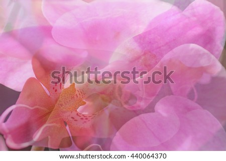 Soft pink floral abstract background texture