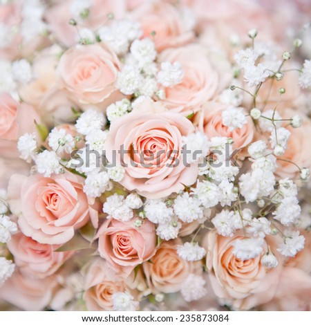 soft pink wedding bouquet with rose bush and little white flowers - stock photo