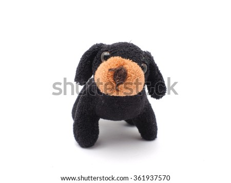soft toy dog on a white background - stock photo