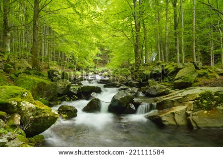 soft water of the stream in the natural park - stock photo