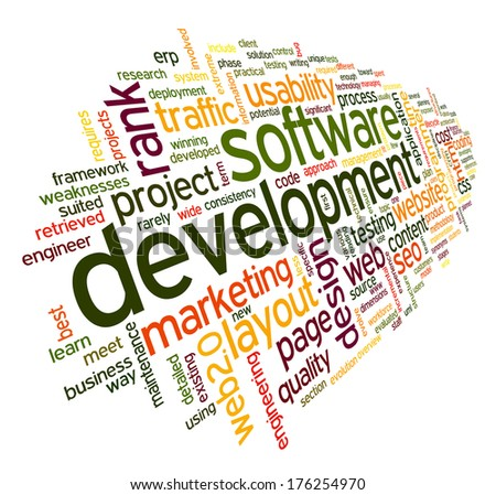 Software development concept in tag cloud on white background - stock photo