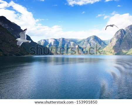 Sogne fjord in the north of Norway - stock photo