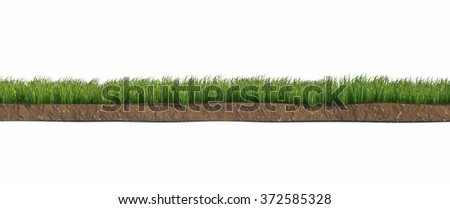 Soil and green grass layers isolated on white background - stock photo