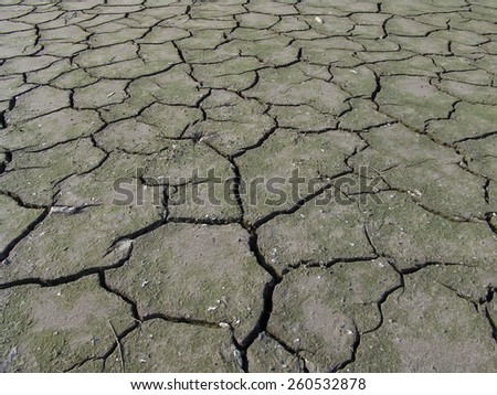 Soil cracks - stock photo