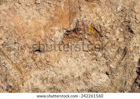 Soil erosion texture background, ground erosion texture - stock photo