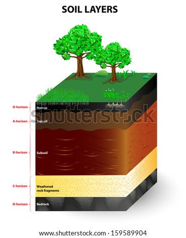 Soil layers stock photos images pictures shutterstock for Soil formation