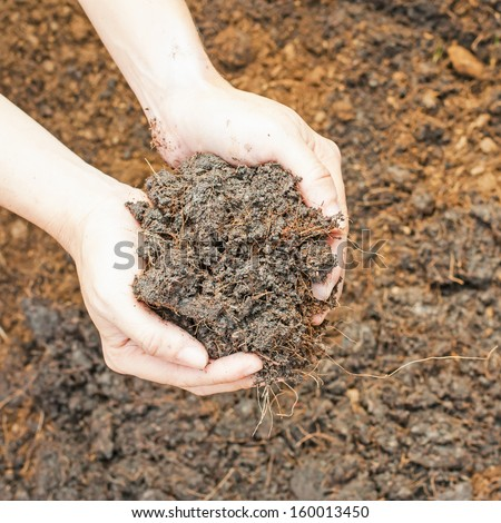 Soil- handful,female hands, humus soil - stock photo