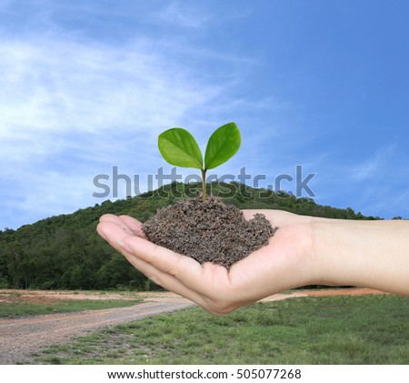 Soil in a Woman hand and treetop on soil with background of blue sky and view Mountain.