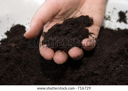 soil in hand - stock photo