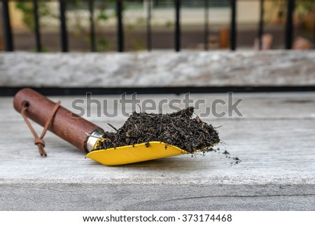 Soil in Shovel spoon - stock photo
